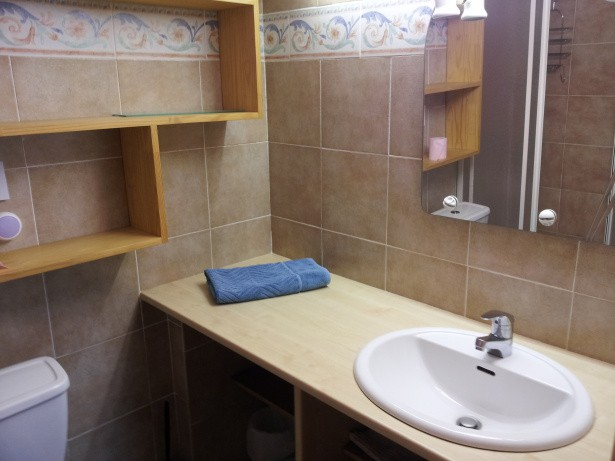 salle de bains avec douche et wc